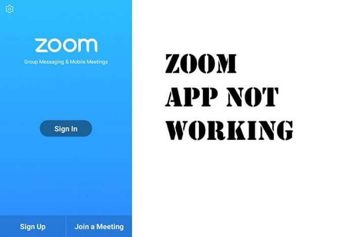 Zoom App Audio Not Working Android iOS