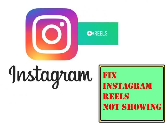 Fix Instagram Reels Not Showing on My Phone